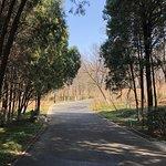 Foto de Qianfoshan