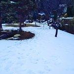 IMG_20180126_135155_large.jpg