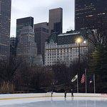 Bilde fra Trump Rink in Central Park