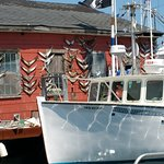 "An artist neighborhood shared by many of the ""wicked Tuna"" captains."