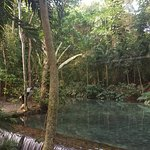 Photo of Rainforest Adventures Jamaica