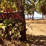 Foto de LocosCocos