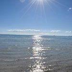 Taylor Bay Beach Foto