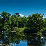 Charles River Peninsula Foto