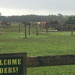 Foto de Princeville Ranch