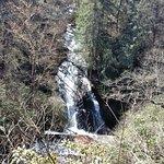 Connestee Falls Foto