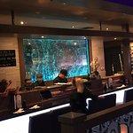 Zdjęcie Wasabi Japanese Steakhouse