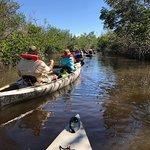Bilde fra Collier Seminole State Park