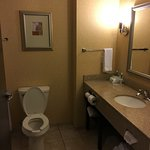 Holiday Inn Express Hotel & Suites Lansing-Dimondale Photo