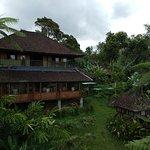Restaurant with Garden View