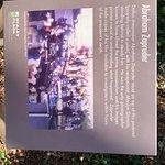 Photo de Dealey Plaza National Historic Landmark District