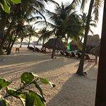 Foto de Ramon's Village Resort