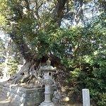 Suwa Shrine resmi