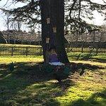 Foto de Rufford Abbey Country Park