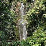 "One of the ""Ohe'o Falls - low and muddy"