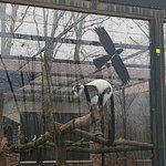 Photo of Zoo Sosto