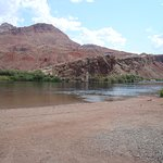 The Colorado River at Lee's Ferry, the start of Grand Canyon