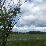 Photo de Nisqually National Wildlife Refuge