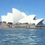Manly Fast Ferry from Darling Harbour to Taronga Zoo (Sydney Opera House)