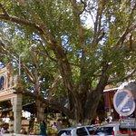 Dodda_Ganeshana_Gudi_Hindu_temple,_Basavanagudi,_Karnataka,_India2_large.jpg