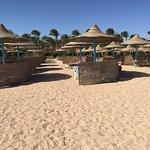 TUI Magic Life Sharm el Sheikh Foto