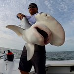 Shark fishing in the Summer is OFF THE HOOK!
