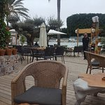 Foto van The Olive Tree Mallorca