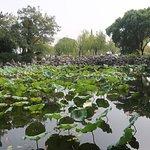 Photo of Liyuan Garden