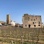 Foto de Rheingau Wine Museum Broemserburg Castle
