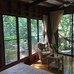 Inside of Tree House Coconut