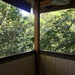 Outdoor shower for Tree House Coconut