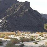 صورة فوتوغرافية لـ Wadi Gemal