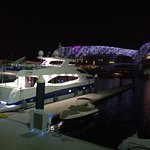 Yas Marina view