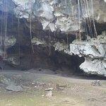 Foto di Charlie's Cave Tubing Tours