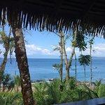 Φωτογραφία: Copa de Arbol Beach and Rainforest Resort