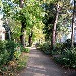 Die Querachse direkt zur Aachener Straße