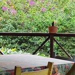 Photo of Magia do Trigo Produtos Naturais e Cafeteria