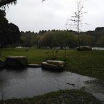 Photo of Parque da Cidade do Porto