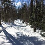 Jackson Ski Touring Foundation Photo