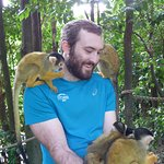 The squirrel monkeys climb all over you!