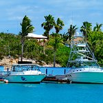 Just a short walk from the villas to dive boats in our marina