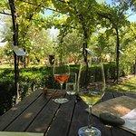 Bistro Luncheon at Hans Herzog Estate