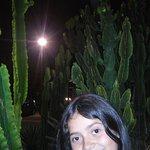 Foto di Taco El Pancho