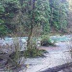 LV Lynn Creek