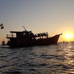 Dolphin Cruise SUNSET
