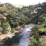 Photo of Karangahake Gorge Historic Walkway