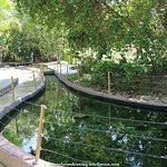1 of the hot springs pool within the park compound