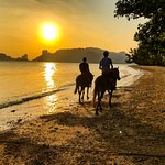 Riding into the sunset at Krabi Nature Horse Riding