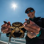 A May River stone crab.