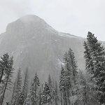Majestic Yosemite Hotel Bar Foto